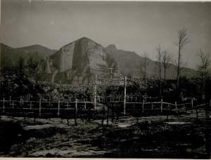 Heroes' cemetery, c1917 behind: Monte TormenoBildarchiv Austria