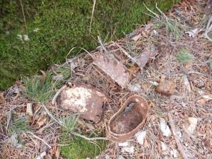 Remains on crest, spring 2015