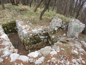 Defensive position above SW flank, spring 2015
