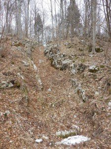Sole supply path to opposite Stalle Campiello,spring 2015